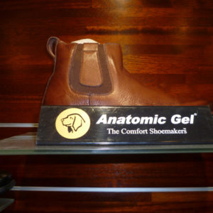 Anatomic & Co